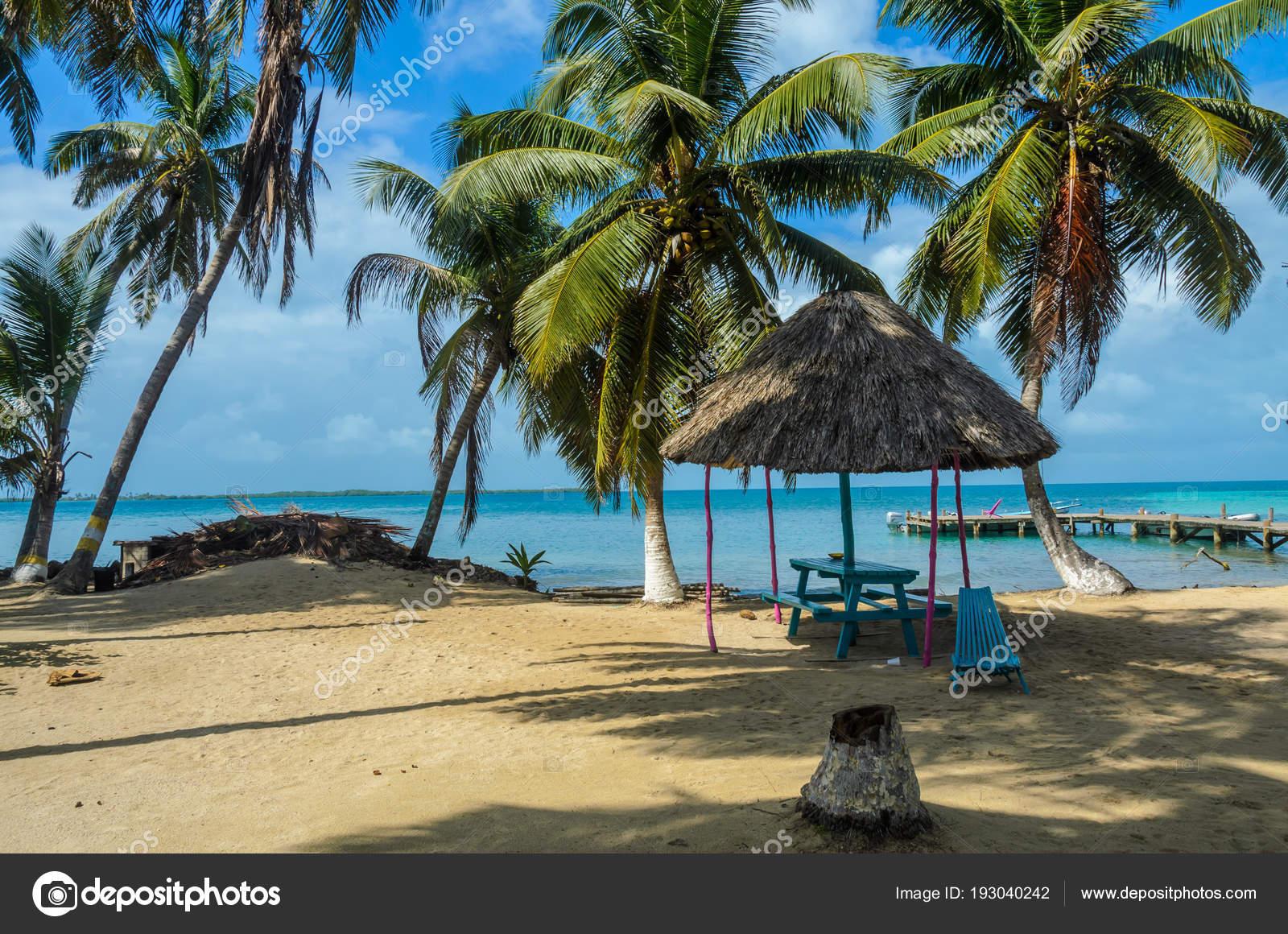 Tobacco Caye Small Tropical Island Barrier Reef Paradise Beach Caribbean Stock Photo Image By C Simondannhauer 193040242