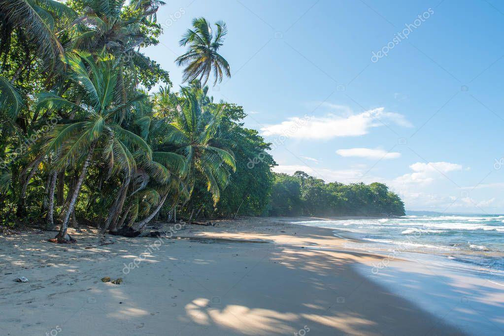 Punta Uva beach in Costa Rica with wild caribbean coast.