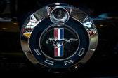 Symbol Ford Mustang, detail