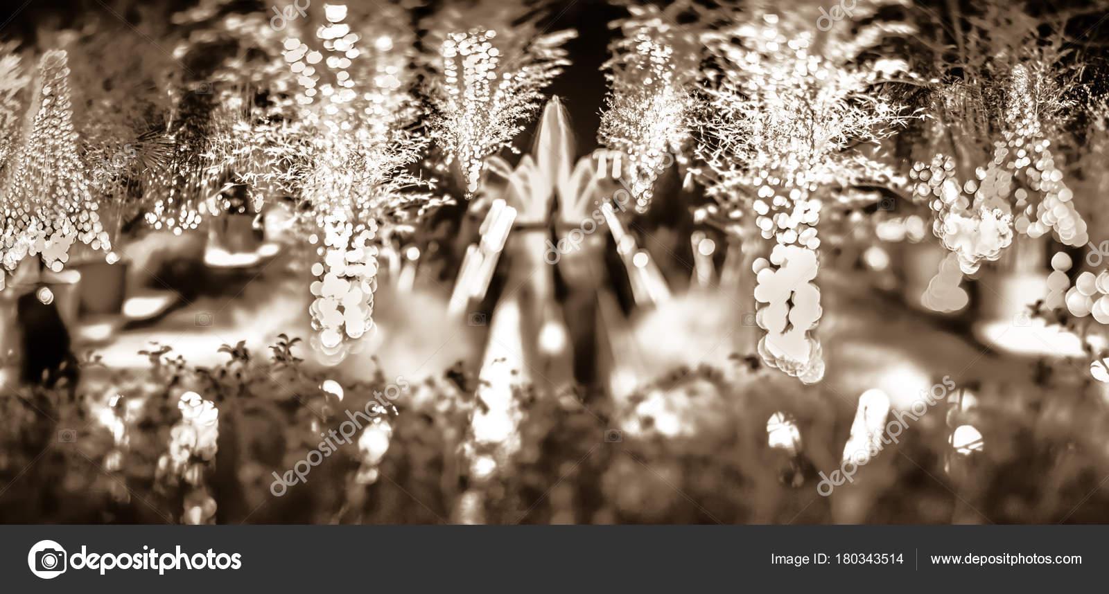 Christmas Light Bokeh Daniel Stowe Gardens Belmont North Carolina ...