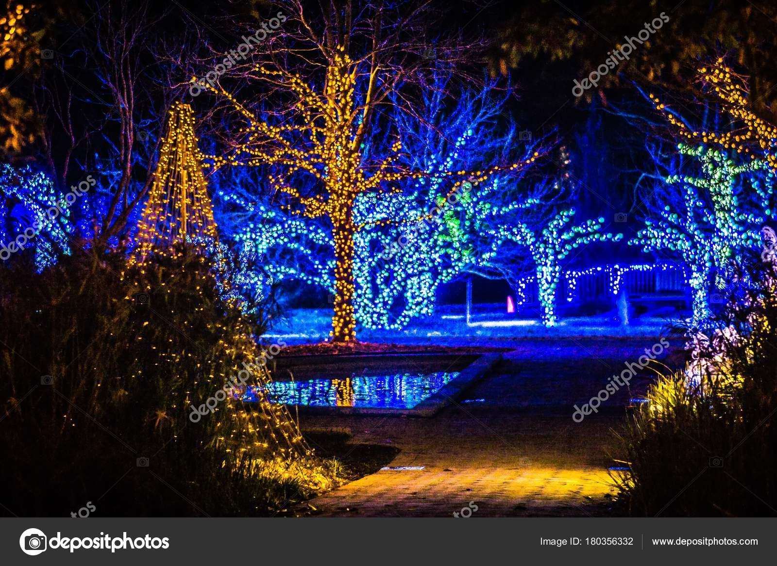Decoraciones temporada navidad luces jardines foto de for Jardines decoraciones