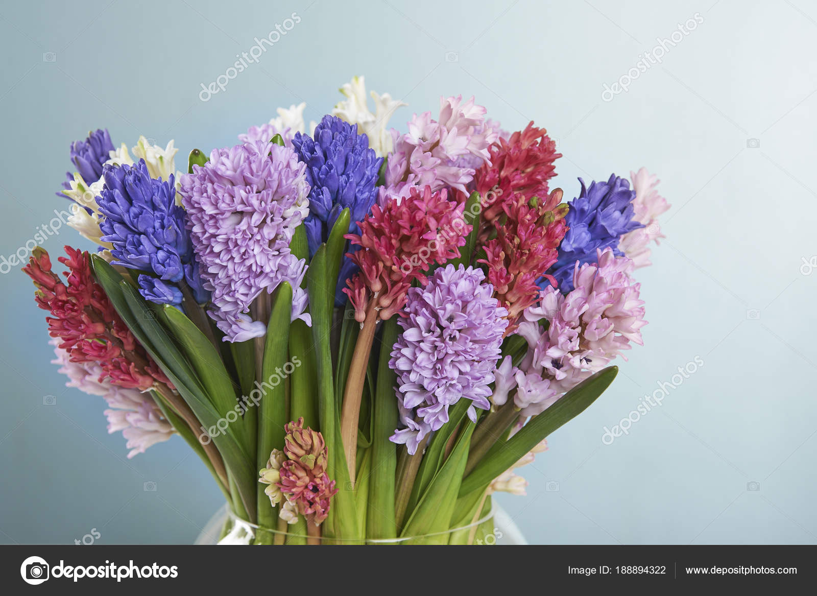 Hyacinth Bouquet Vase White Wood Table — Stock Photo © nikulyasha1 ...