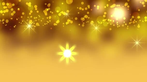 Vánoční hvězdy slavnostn