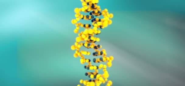 dna genetics clone gene science