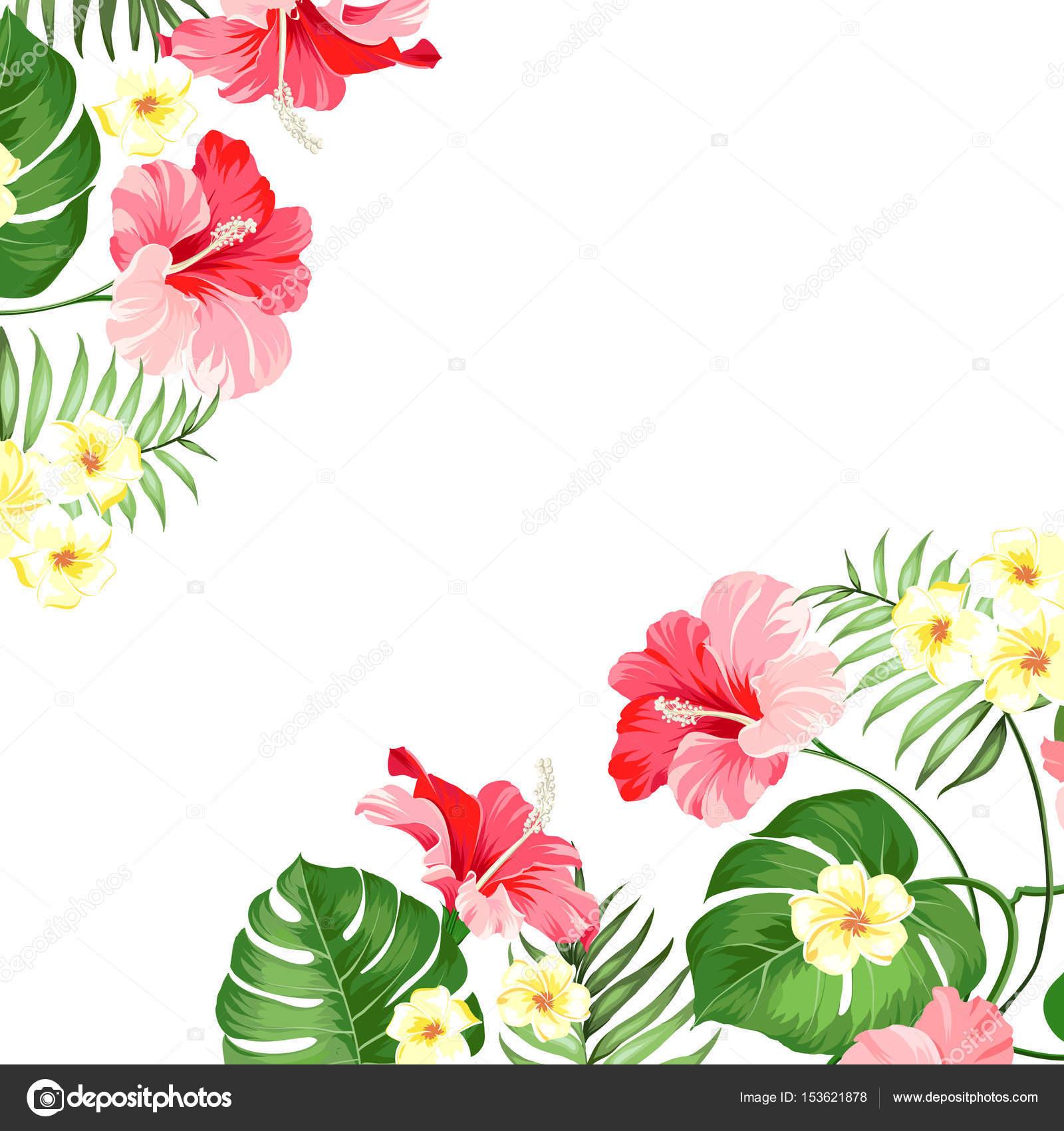 Tropical flower garland stock vector kotkoa 153621878 tropical flower garland stock vector izmirmasajfo