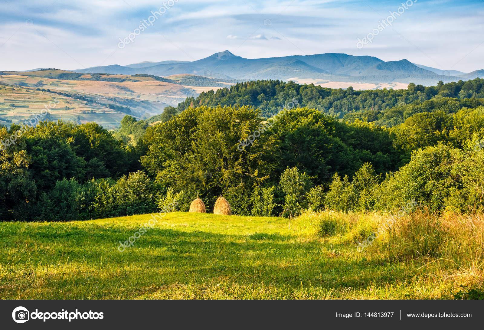 Pile di fieno sul lato della collina foto stock for Piani di serra in collina