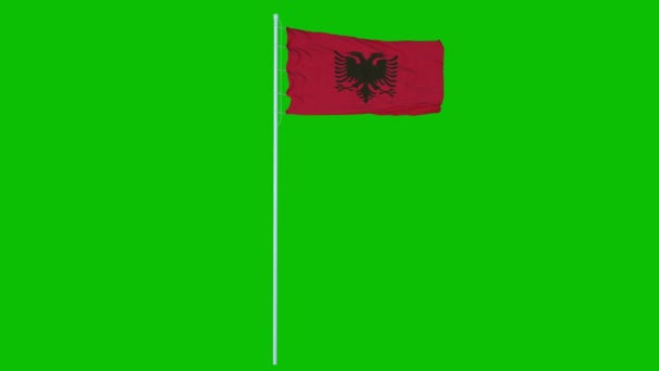 Albania Flag Waving on wind on green screen or chroma key background. 4K animation