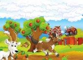 běh koně a psa s hlad koza