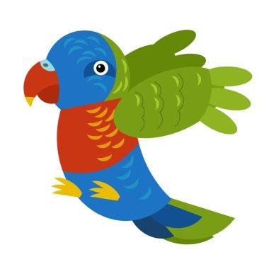 Cartoon australian animal bird parrot on white background illustration for children stock vector