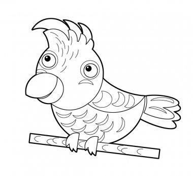 Cartoon sketch australian animal bird cockatoo on white background illustration for children stock vector