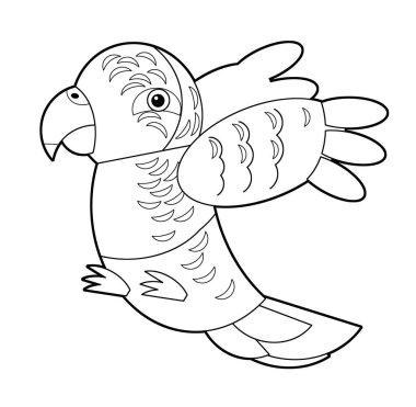 Cartoon sketch australian animal bird parrot on white background illustration for children stock vector