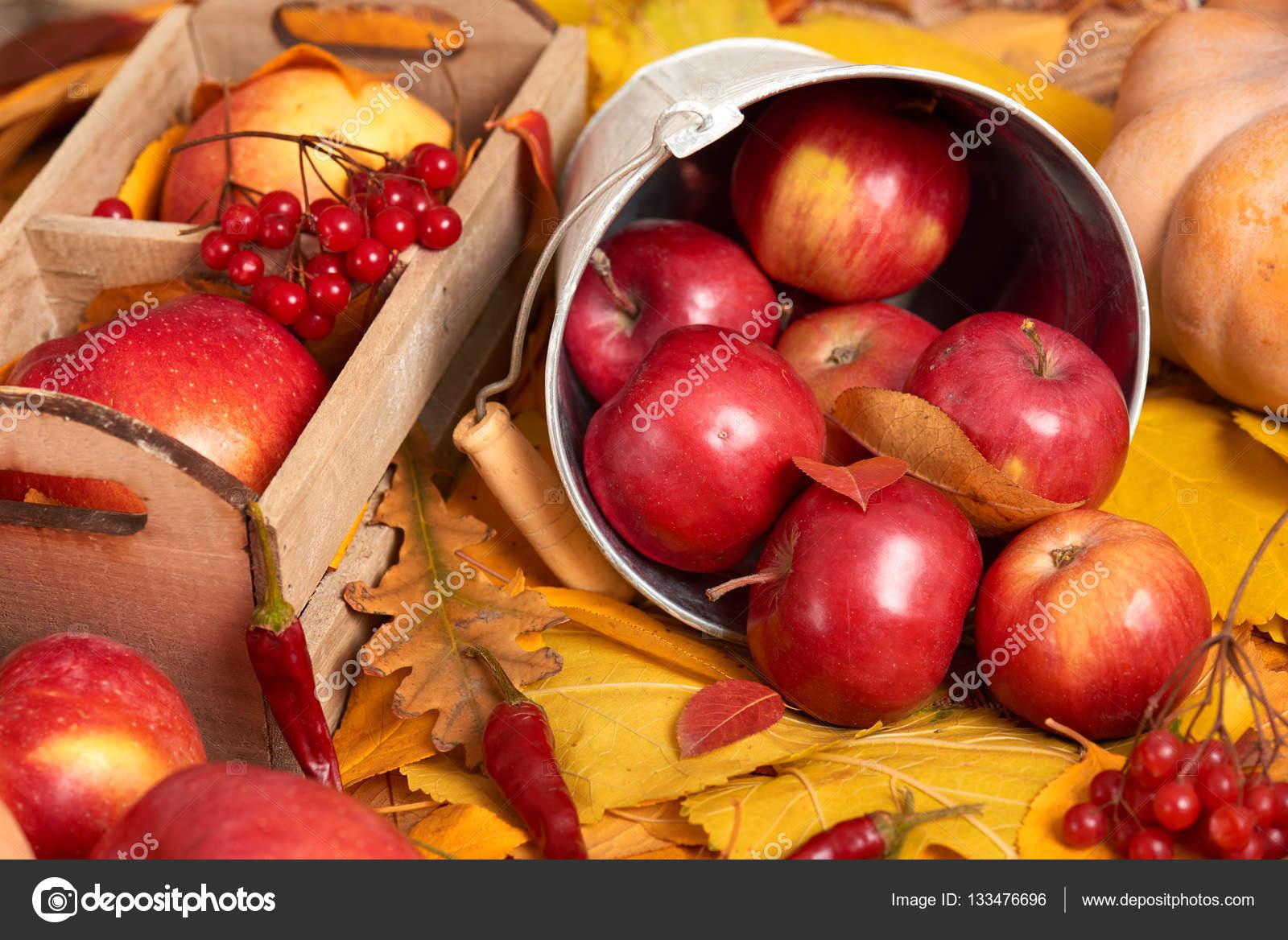 Herbst Hintergrund Obst Und Gemuse Auf Gelbes Laub Apfel Und