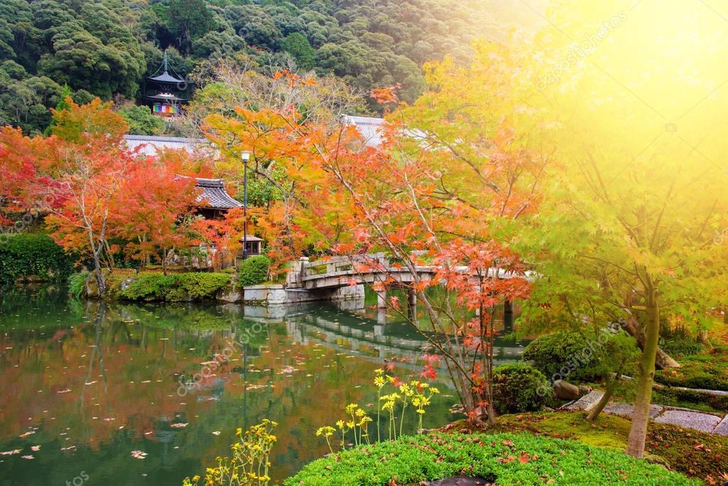 秋の紅葉、京都の永観寺 — スト...