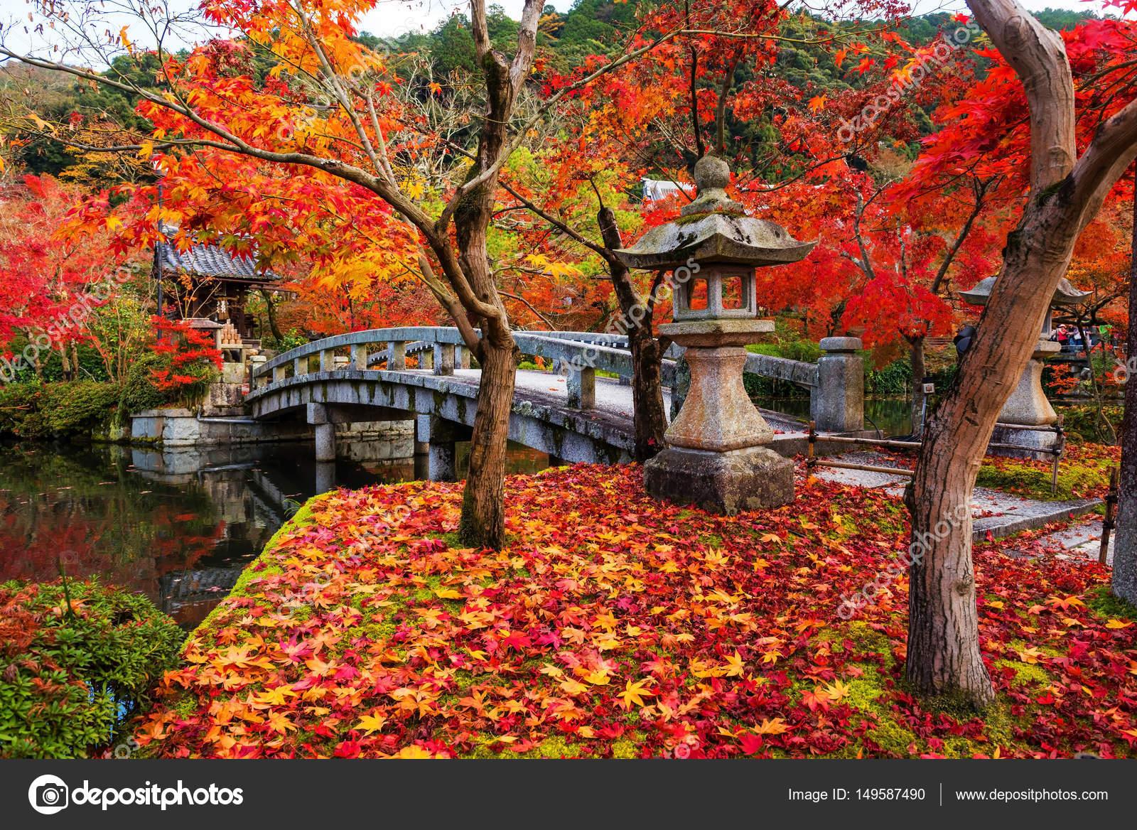 秋、京都の永観 — ストック写真 ...
