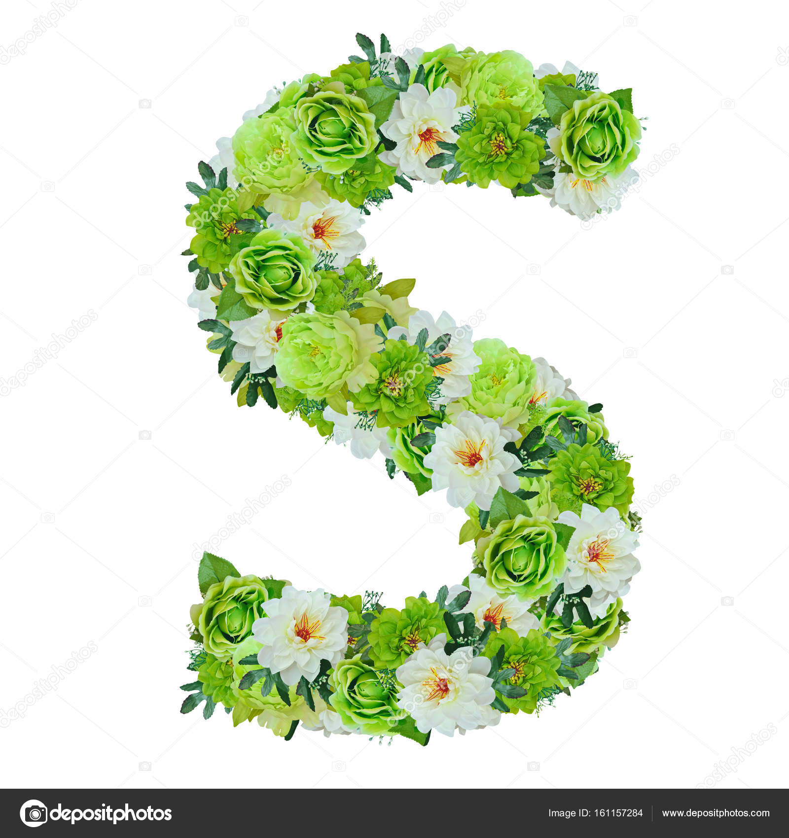 Fiori Con La S.Letter S From Green And White Flowers Isolated On White With Wor