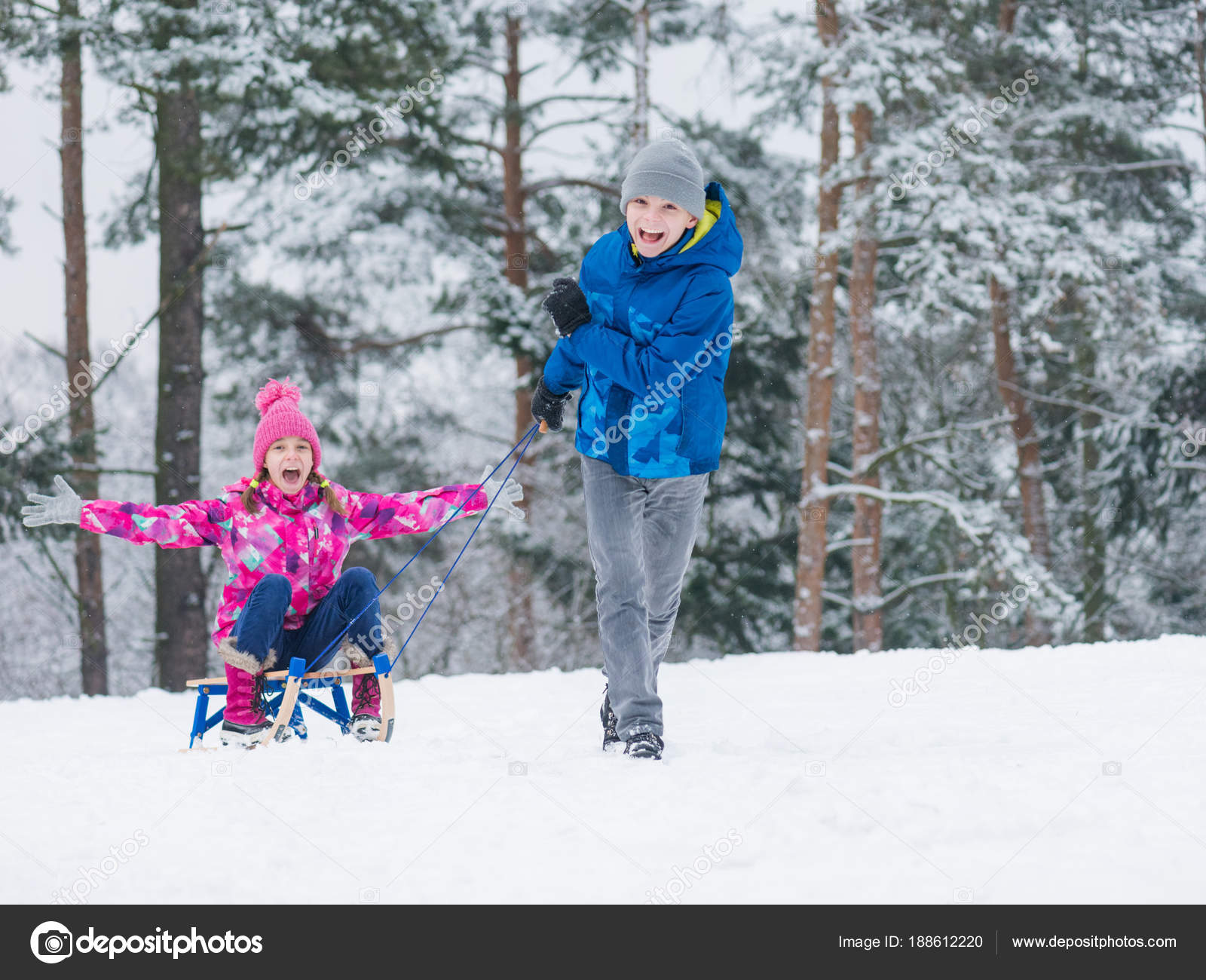Christmas Vacation Sled.Children Riding Sled In Winter Stock Photo C Valiza 188612220