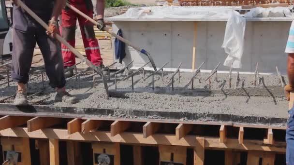 Stavební dělníci používají lopaty a lopatu k zarovnání čerstvého betonu do dřevěné formy s výztuhou.