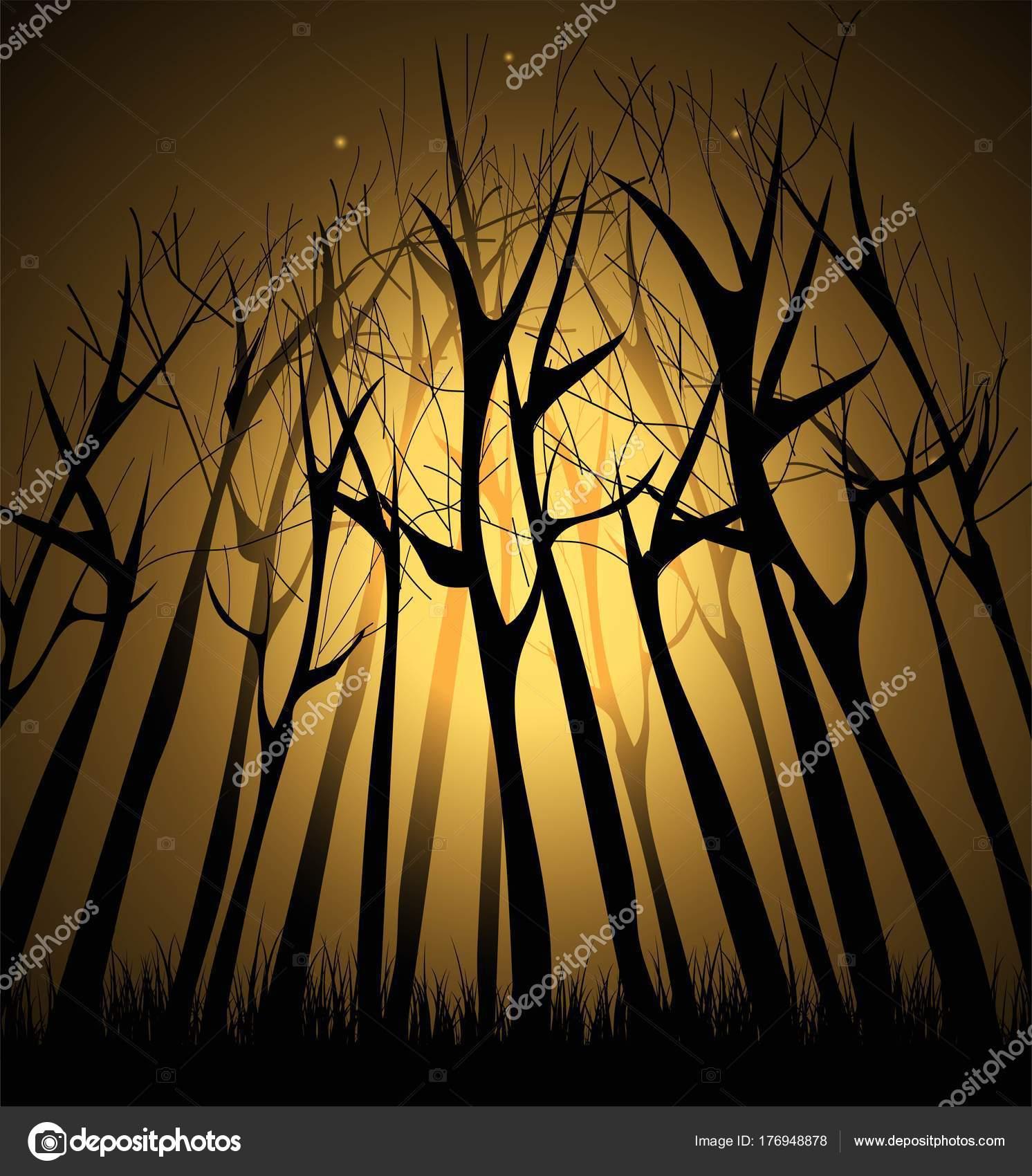 https://st3.depositphotos.com/1724272/17694/v/1600/depositphotos_176948878-stockillustratie-magische-donker-bos-met-verlichting.jpg