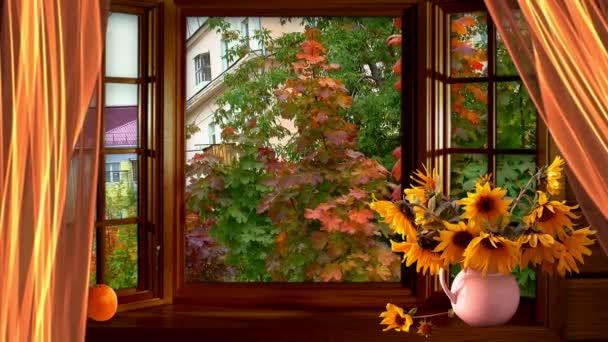 podzimní okno javor zátiší