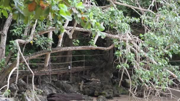 dřevěný most vedoucí k pláži Pai Plong. Pláž Ao Nang, Město Krabi, Thajsko