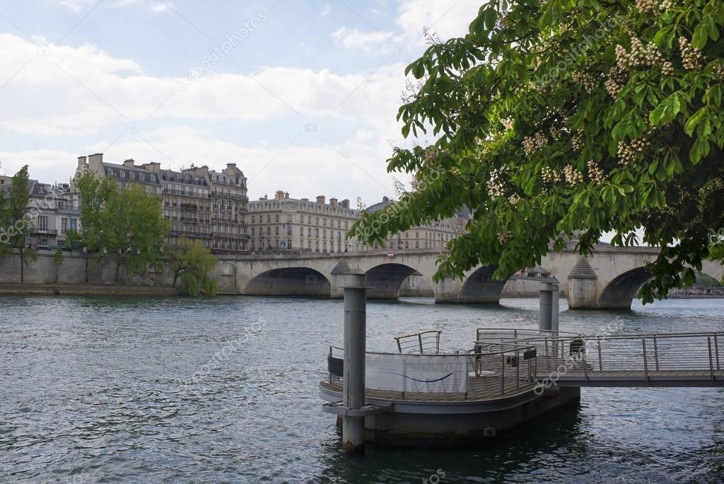 In Paris chestnuts are blooming. View of the Royal Bridge