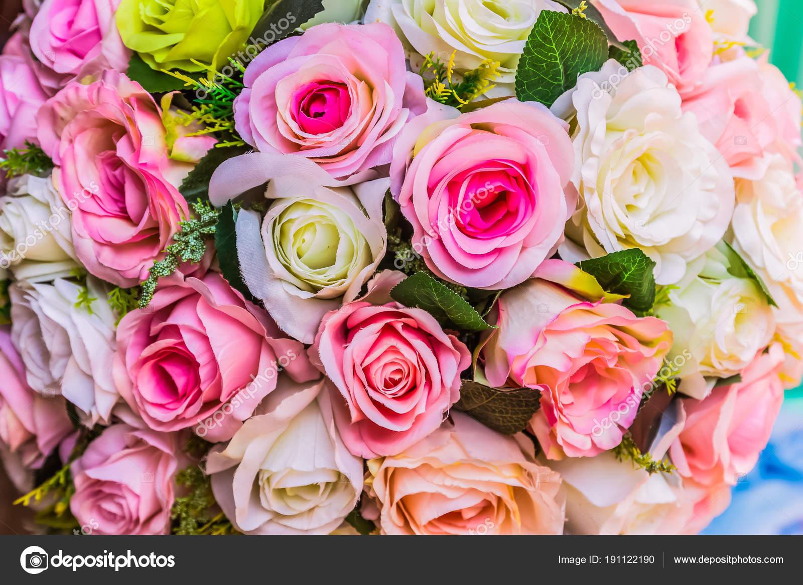 Colores Rosas Con Fondo De Colores Diferentes Fotos De Stock
