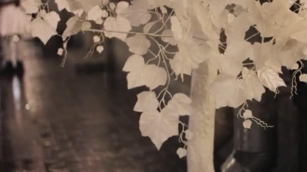 bílý strom ulice dekorace sníh listy mokrý sníh