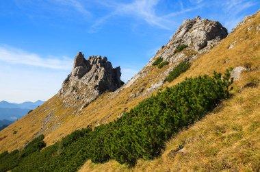 Mountain trail from Hala Kondratowa valley to Kopa Kondracka and Giewont in autumn season, Tatra Mountains, Poland