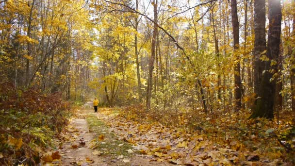 Aged sporty woman jog in autumn forest