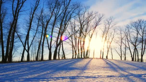 Času zanikla natáčení ze západu slunce v zimním lese