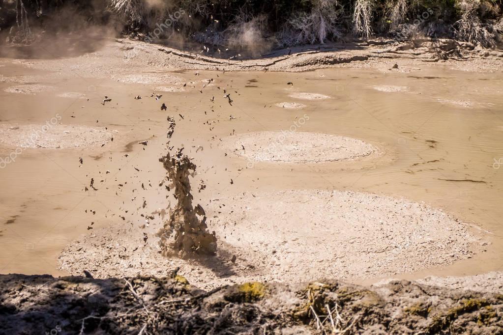 Mud pool in Rotorua