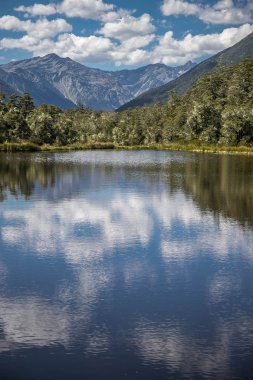 alpine landscape with forest, lake, cloud reflection, lewis pass, new zealand
