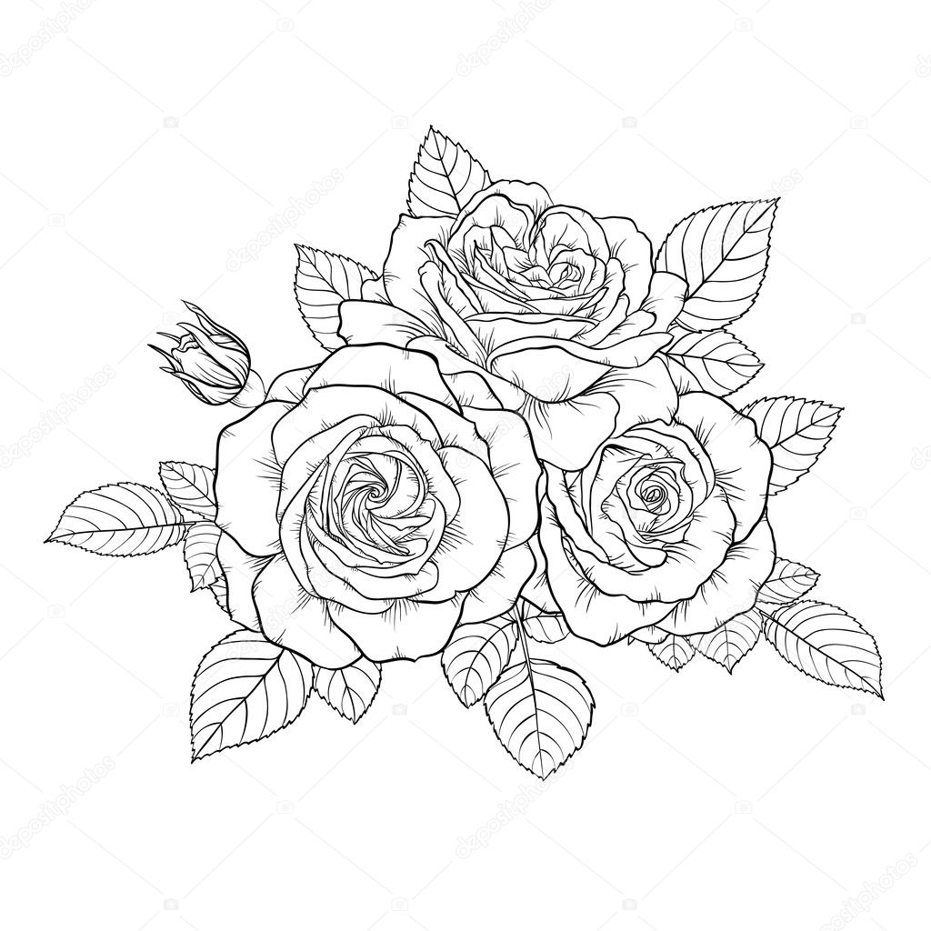 美しいモノクロ白黒花束バラの背景に分離 ストックベクター