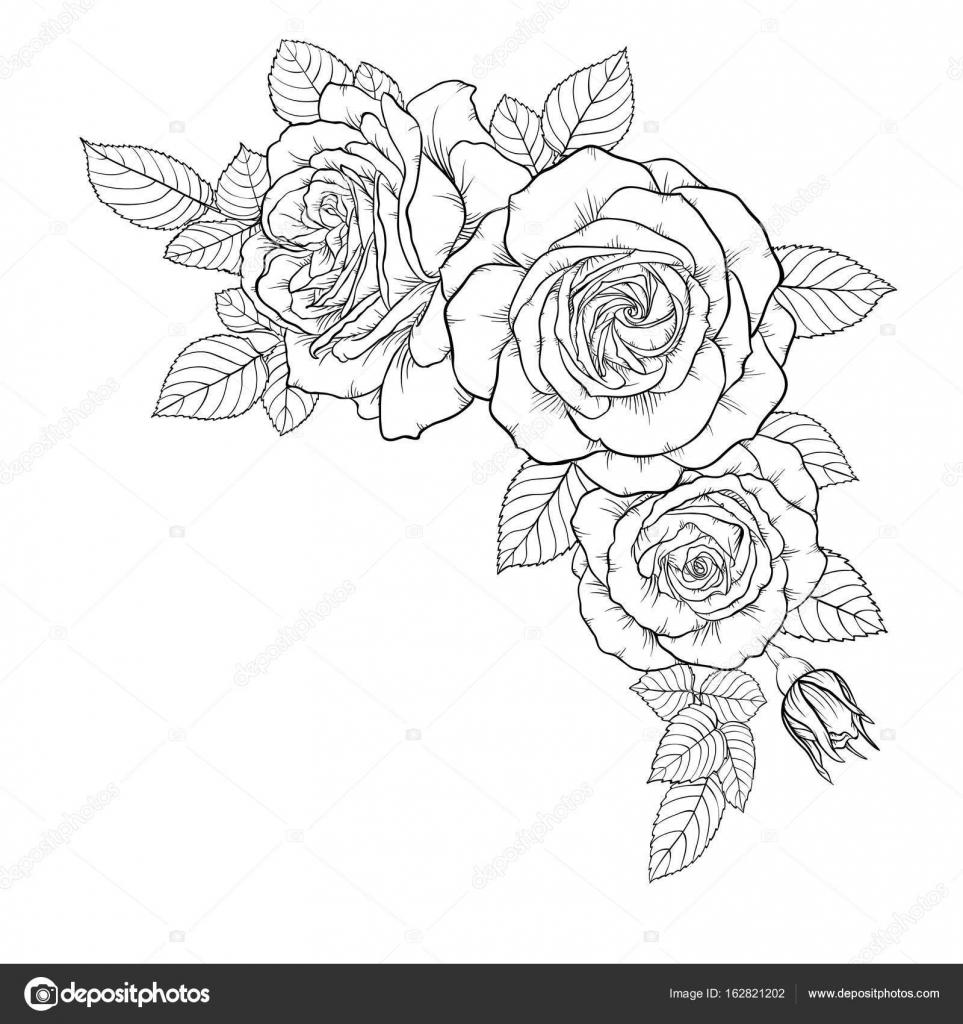 hermoso ramo blanco y negro color de rosa y hojas. Arreglo floral ...