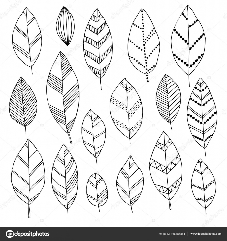 Beautiful Black And White Set Of Hand Drawn Doodle Leaves Isolated