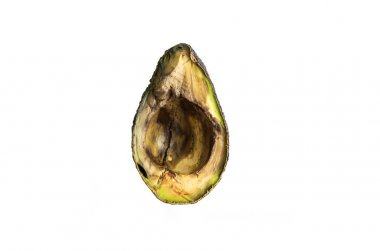 Halved rotten spoiled avocado fruit macro close up shot isolated on pure white 2020