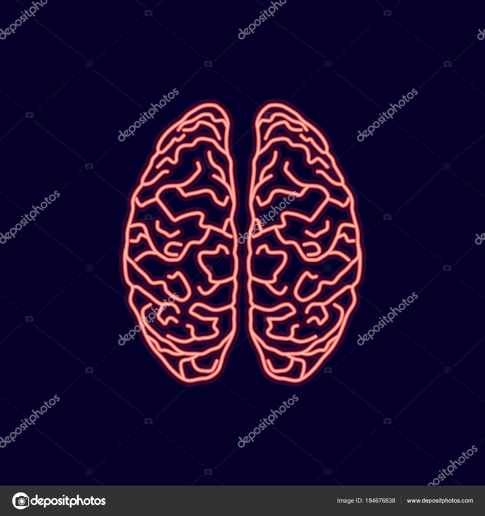 Neon Leuchten Symbol des Gehirns Hirnrinde auf blauem Hintergrund ...