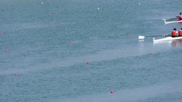 Regatta im Rudern auf dem ruhigen See, full hd video