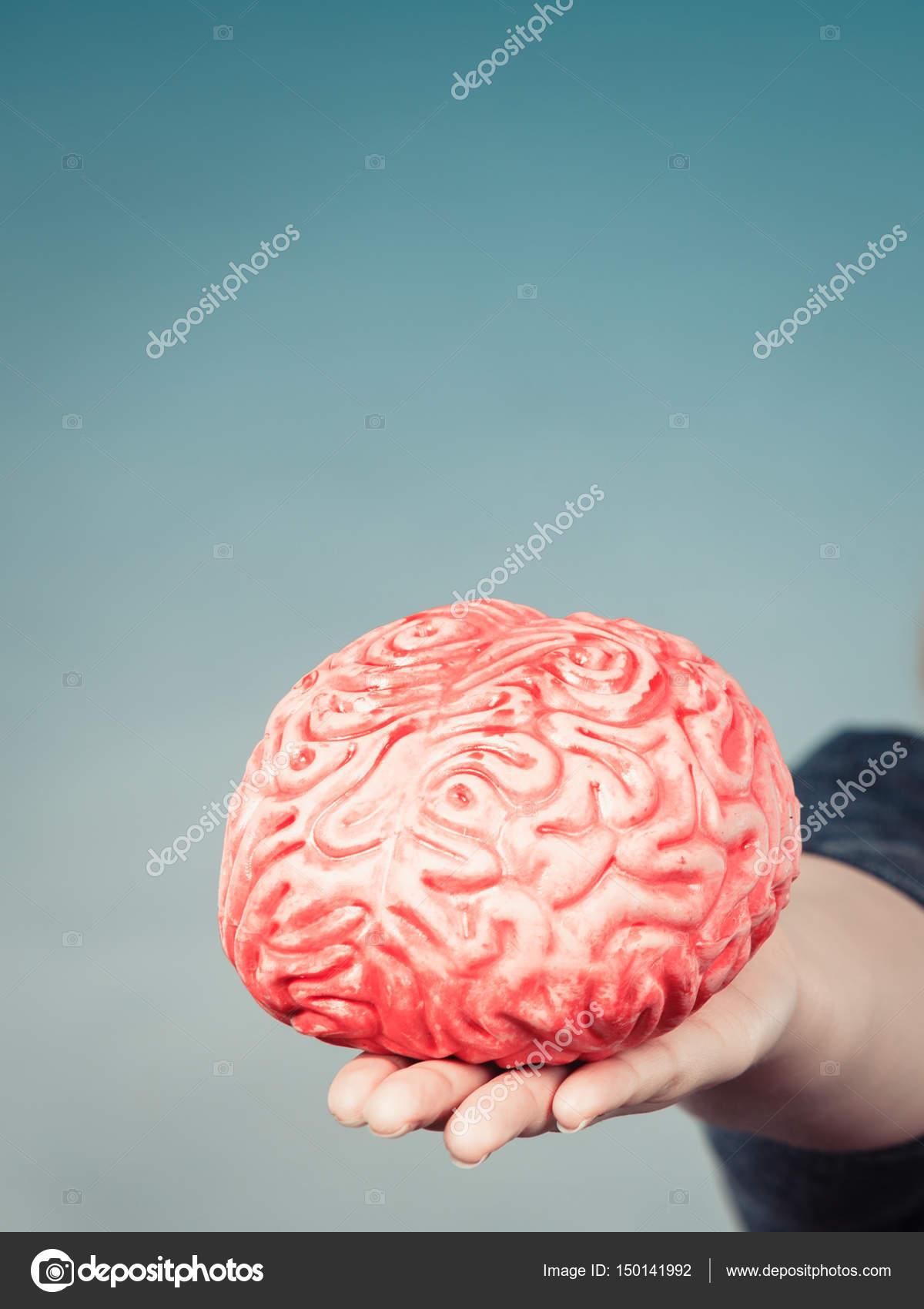 Frau Hand Holding Gehirn — Stockfoto © Voyagerix #150141992