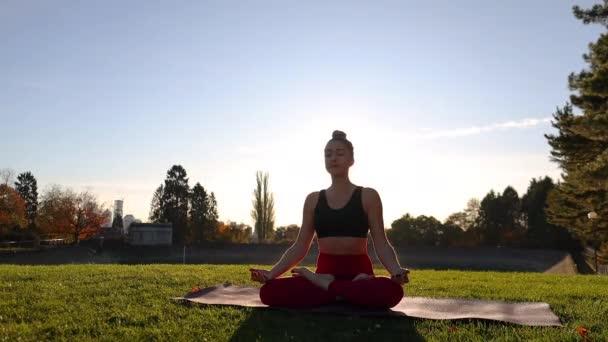 Meditační praxe všímavosti v parku - Mladá žena relaxuje své myšlenky sedí v lotosové józe