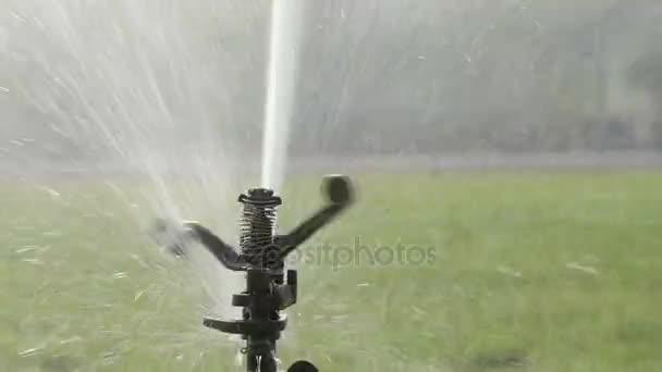 Sprinklerů zalévání v golfové hřiště