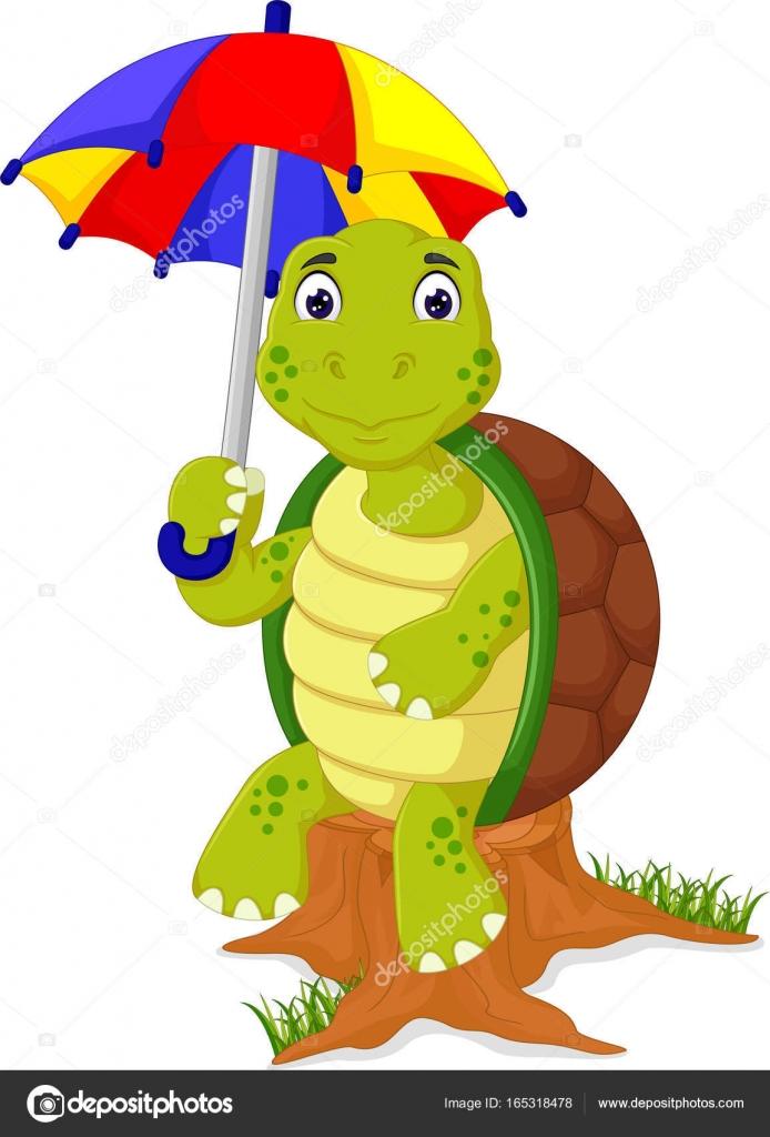 dibujos animados tortugas lindo traer paraguas — Vector de stock ...