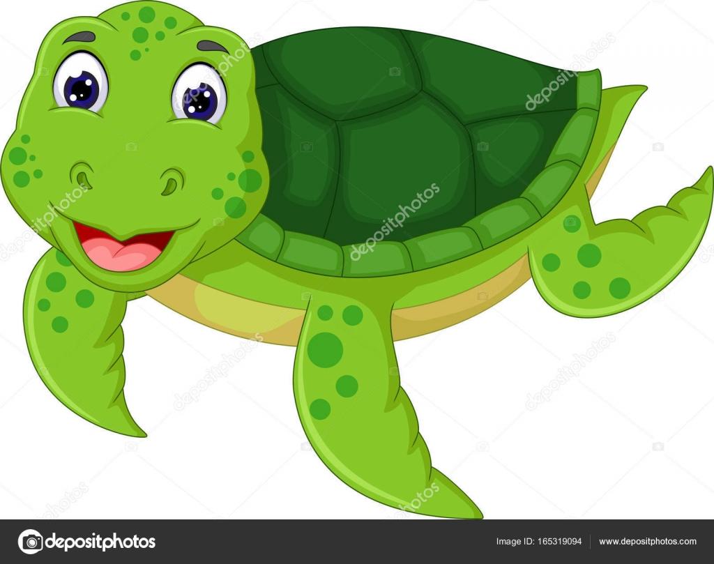 Cartoon Turtle Face Funny Cartoon Turtle With Posing Stock