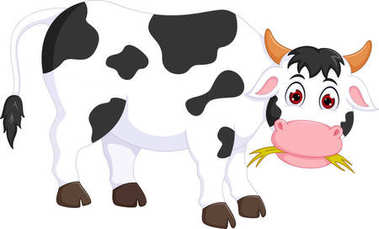 funny cow cartoon standing with eating grass