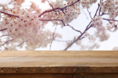 wooden table in front of white cherry tree