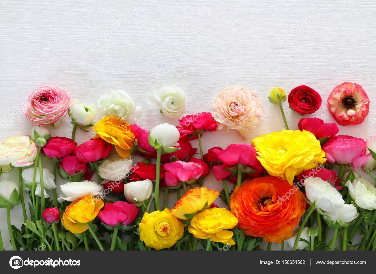 Top View Of Beautiful Flowers Arrangement Stock Photo Tomert