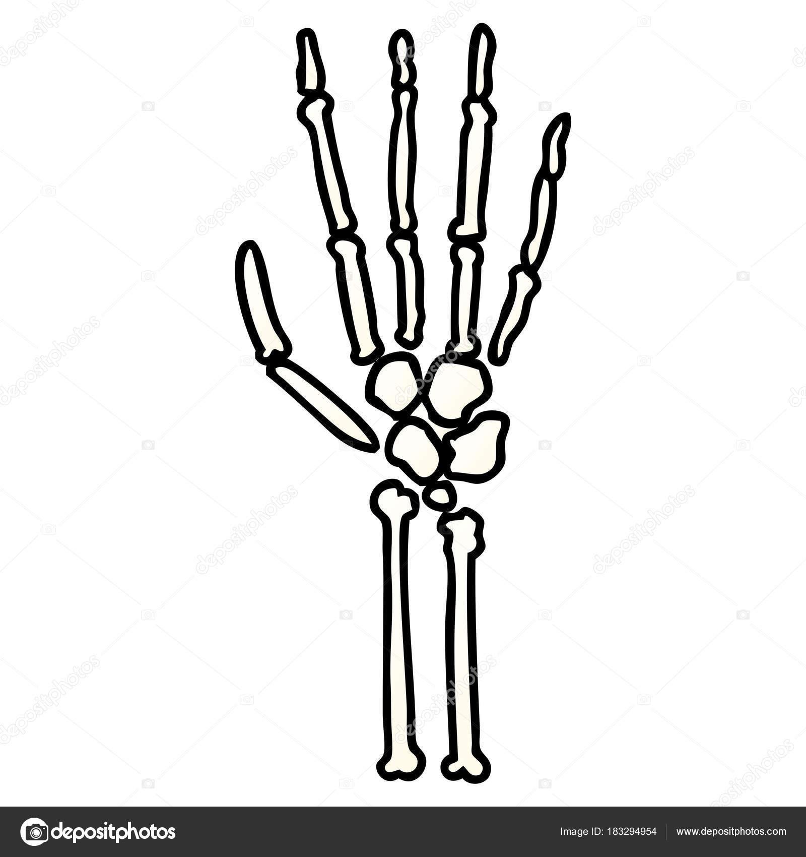 Ilustración Vector Mano Esqueleto Dibujos Animados — Archivo ...