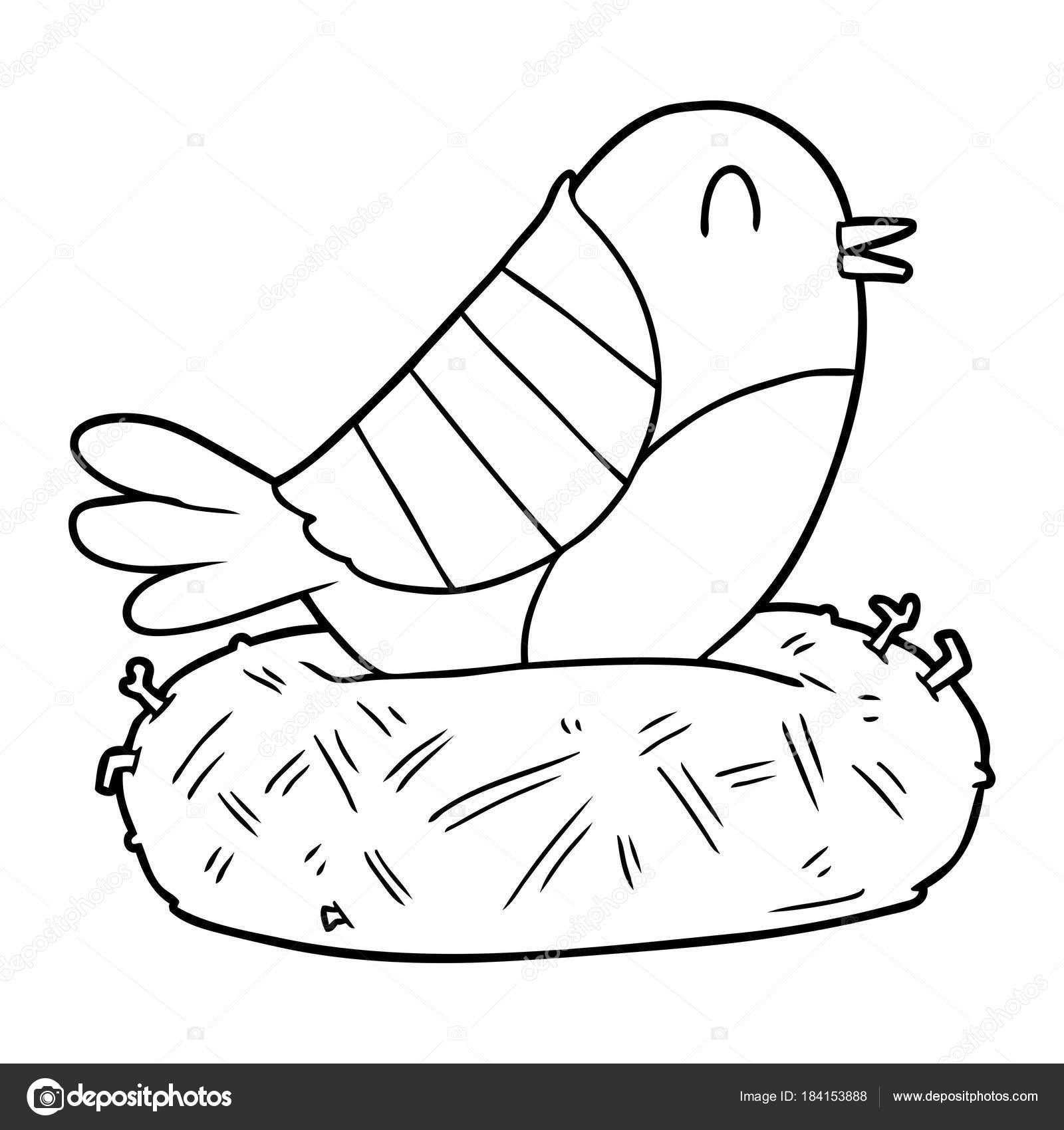 Animado Nido De Pajaro Dibujo Dibujos Animados Pájaro