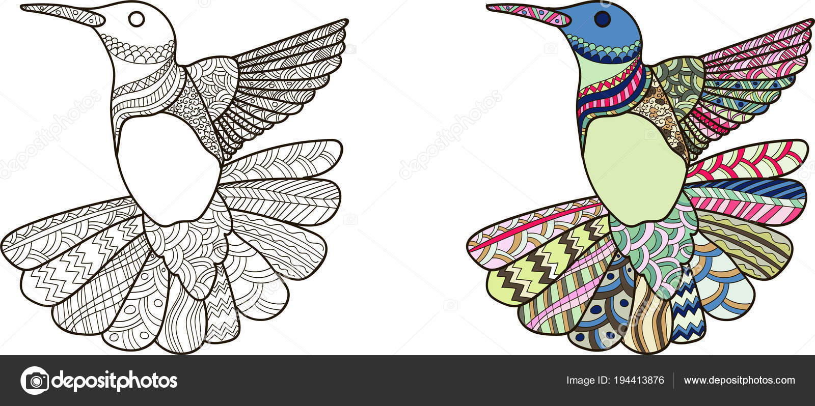 Dibujo Estilo Zentangle Colibrí Para Colorear Libro Tatuaje Diseño ...