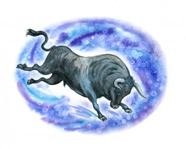 Running bull in a frame of snow splashes, New Year card, watercolor illustration on a white background. The eastern horoscope, the symbol of the year is the bull.